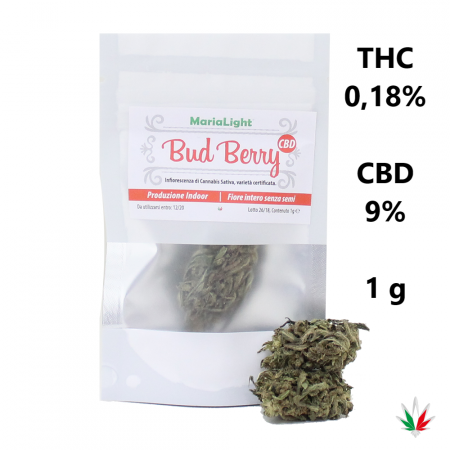 MariaLight BUD BERRY (CBD 9%) – Italy Hemp