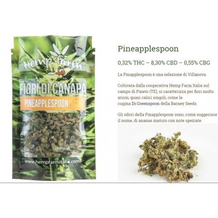 PINEAPPLESPOON 3g o 8g (CBD 9% - CBG 0,55%) - Hemp Farm Italia