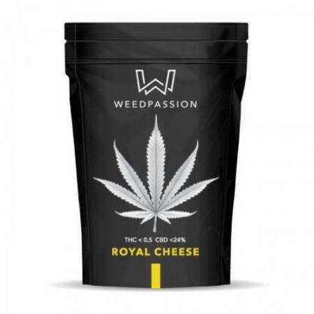ROYAL CHEESE (CBD 24%) - WeedPassion
