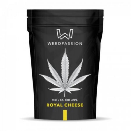 ROYAL CHEESE (CBD 24%) - WeedPassion