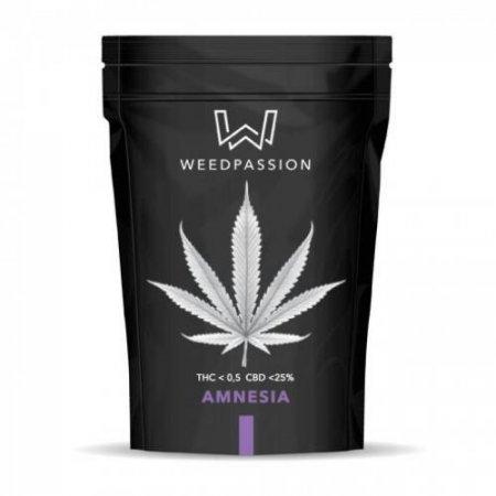 AMNESIA 1gr (CBD max 25%) - WeedPassion
